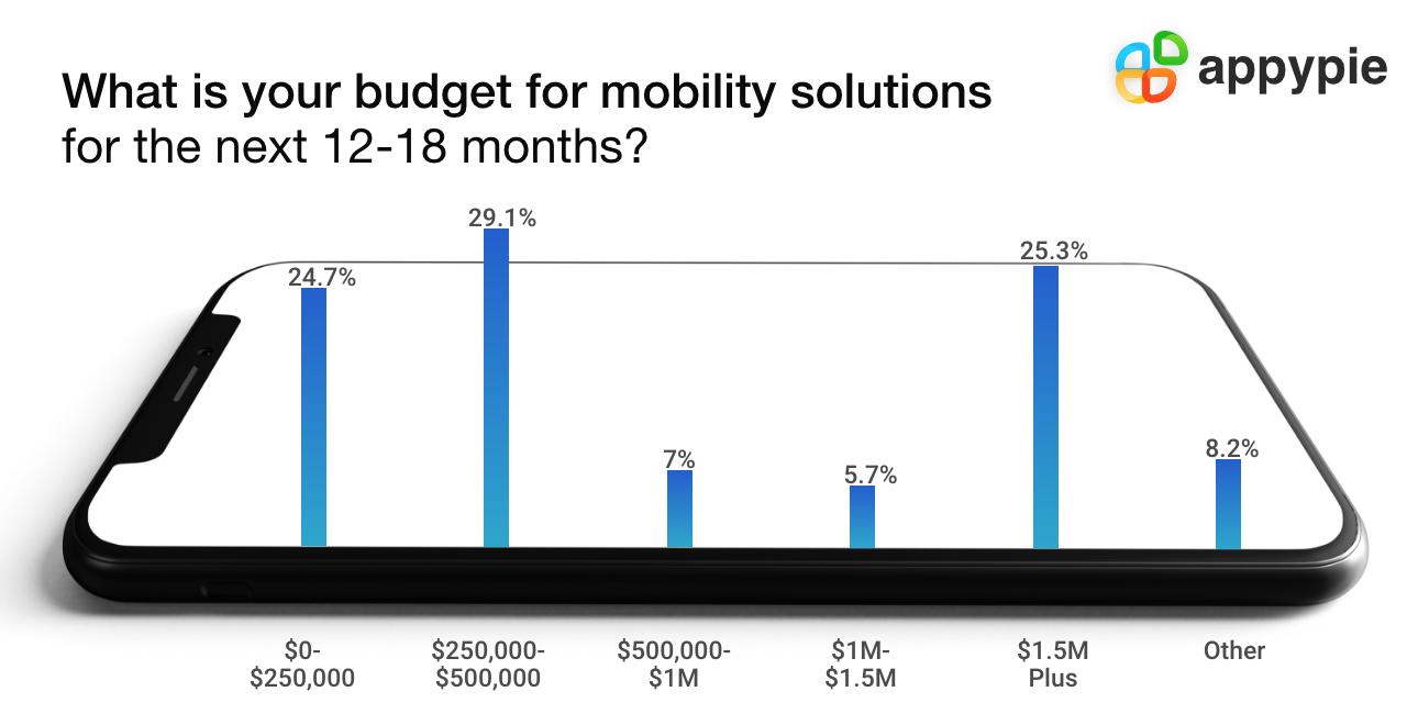Planning the budget for app development